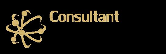 logo-consultant-informatique