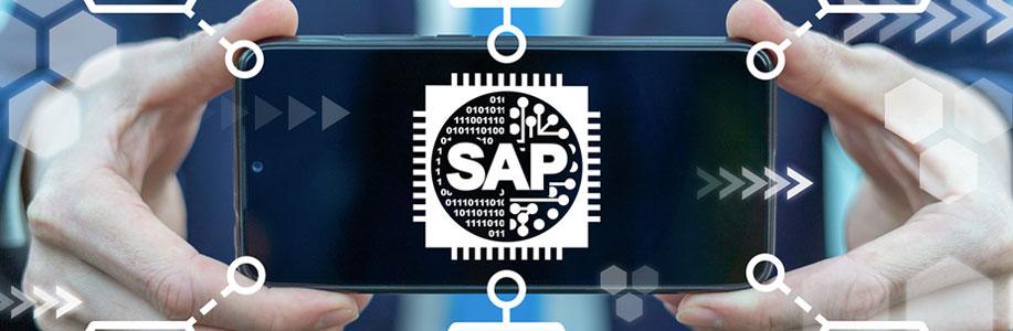 Logiciel de gestion SAP